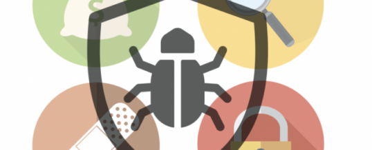 How to avoid nasty flies in your bug bounty program